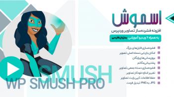 افزونه وردپرس WP Smash Pro